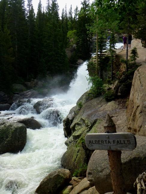 Below Alberta Falls