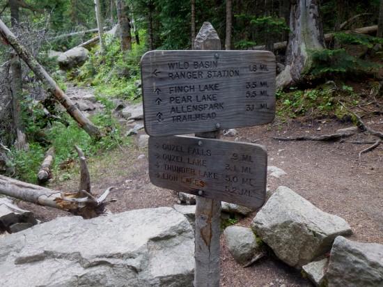 Junction w/ Allenspark Trail
