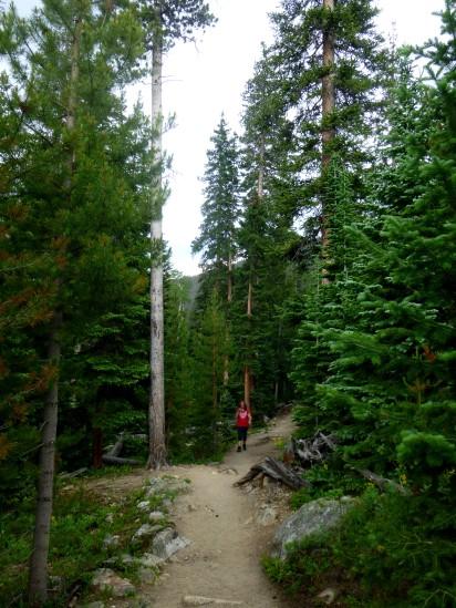 Trail beyond Calypso Cascades