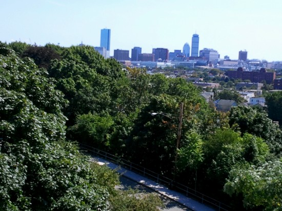 View from Prospect Hill