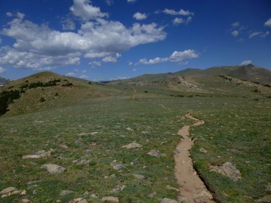 Plateau section