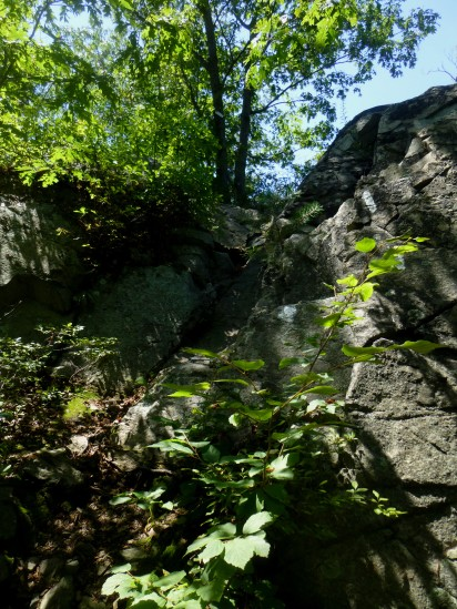 Climbing rock #1
