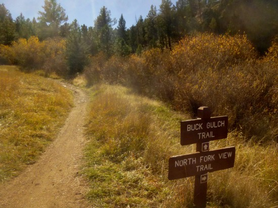 Start of Buck Gulch Trail
