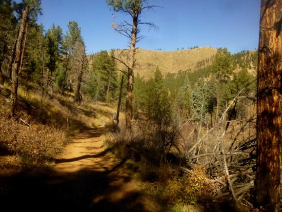 Buck Gulch Trail