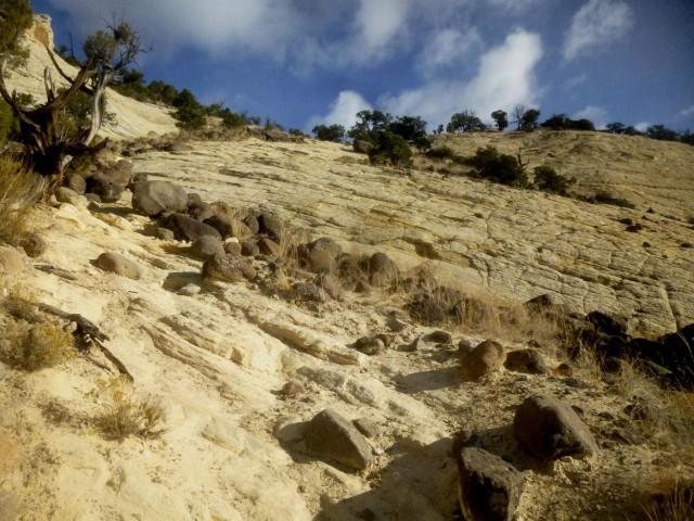 Descent down Navajo sandstone slickrock, Upper Calf Creek Falls Trail, Grand Staircase-Escalante National Monument