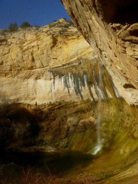Upper Calf Creek Falls from the shady alcove, Grand Staircase-Escalante National Monument