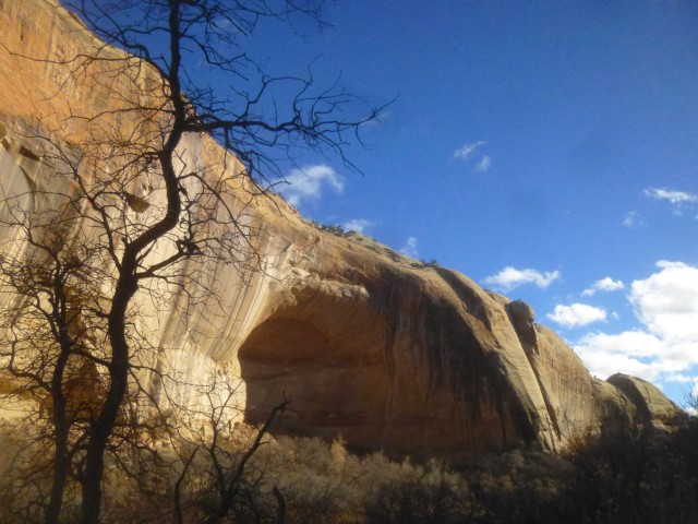 Desert varnish in Calf Creek Canyon, Lower Calf Creek Falls Trail, Grand Staircase-Escalante National Monument