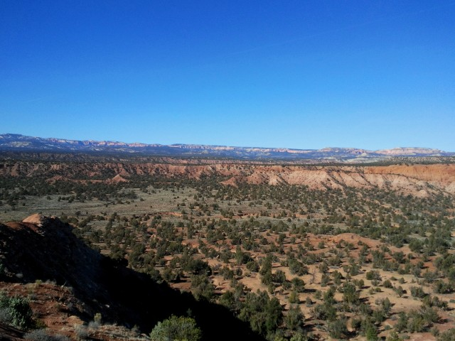 The pink cliffs of Bryce Canyon National Park, viewed from Panorama Point