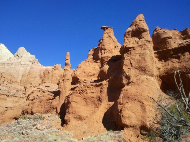 "The ""Hat Shop,"" Panorama Trail, Kodachrome Basin State Park"