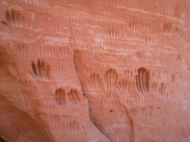 Handprints or peculiar geological weathering? Indian Cave, Panorama Trail, Kodachrome Basin State Park
