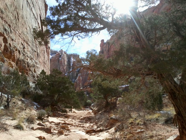 Shinob Canyon, Capitol Reef National Park, January 2015