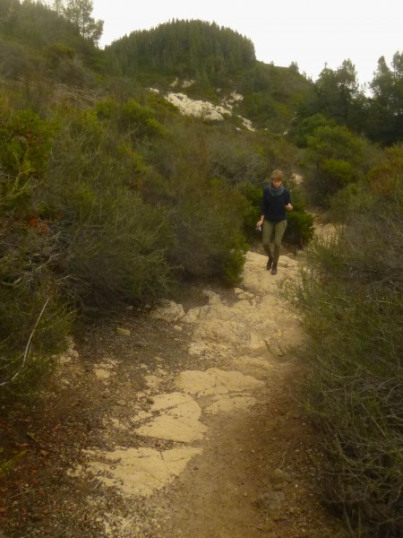 Second significant descent, Table Rock Trail