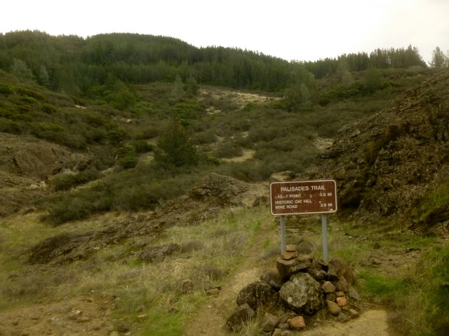 Start of Palisades Trail, Robert Louis Stevenson State Park