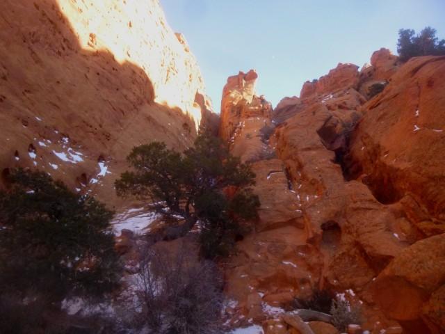 The ravine up to Meeks Mesa