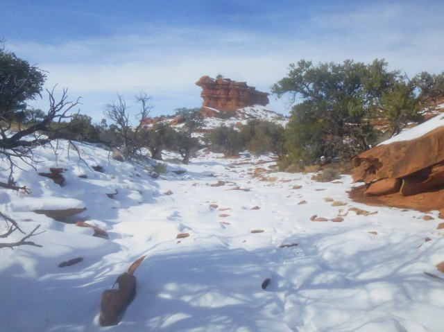 Point 6,230', Capitol Reef National Park, January 2015