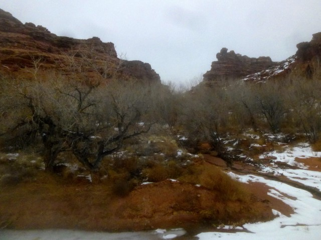The mouth of Stair Canyon, marked by a grove of willows, North Wash area, Utah