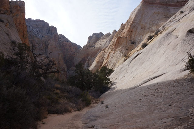 Entering Surprise Canyon, Capitol Reef National Park