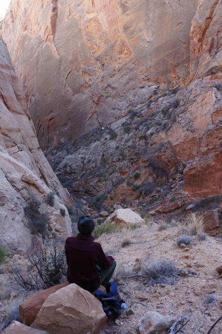 Surprise Canyon, Capitol Reef National Park, January 2015