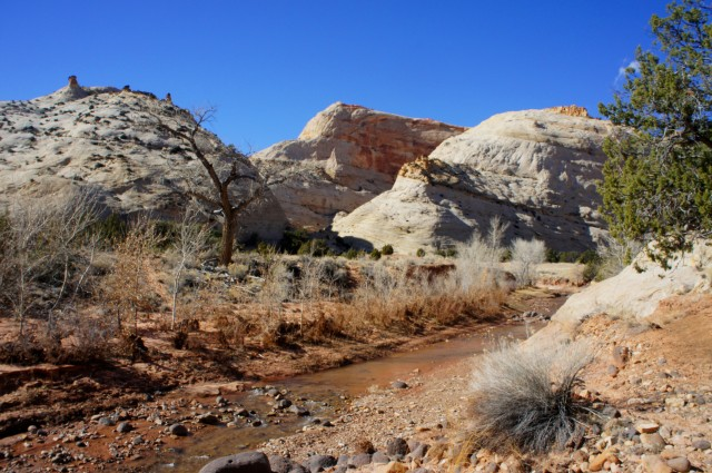 Pleasant Creek, Capitol Reef National Park, February 2015