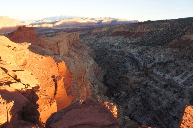 View down into Sulphur Creek Canyon, Sunset Point Trail, Capitol Reef National Park