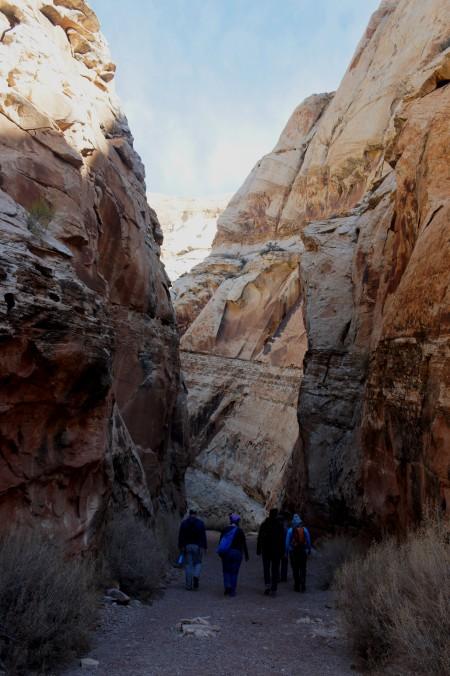 Ascending Bell Canyon, through a short narrows