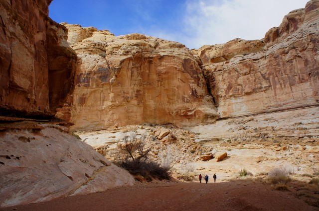 High walls of Navajo sandstone, Little Wild Horse Canyon