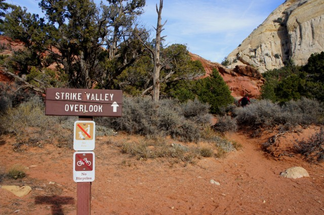Strike Valley Overlook trailhead in Upper Muley Twist Canyon, Capitol Reef National Park