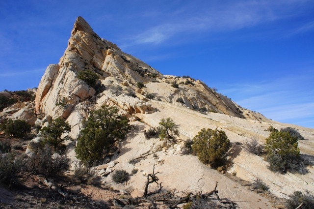 Navajo sandstone ridge to the north