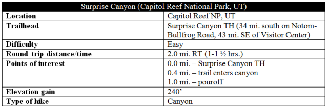 Surprise Canyon trail information