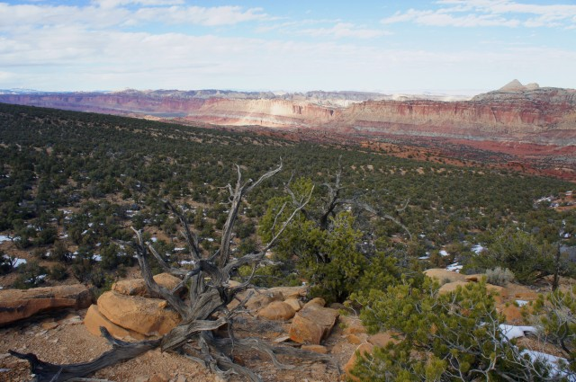 View north from the overlook, Old Wagon Trail, Capitol Reef National Park