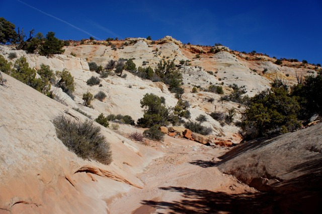 Red Canyon wash meanders through the Navajo sandstone