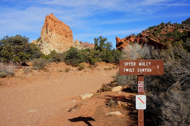 Upper Muley Twist Canyon Trailhead
