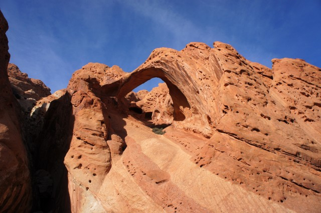Saddle Arch, Upper Muley Twist Canyon, Capitol Reef National Park