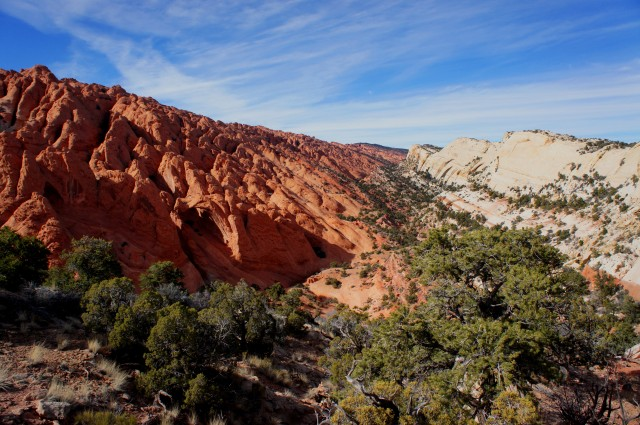 Upper Muley Twist Canyon, Capitol Reef National Park, February 2015
