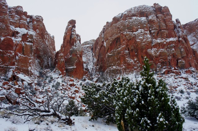 Chimney Rock Canyon in snow, Capitol Reef National Park