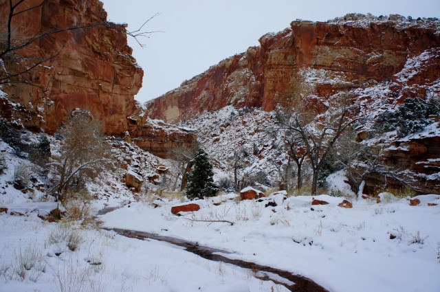 Upper Spring Canyon in snow, Capitol Reef National Park