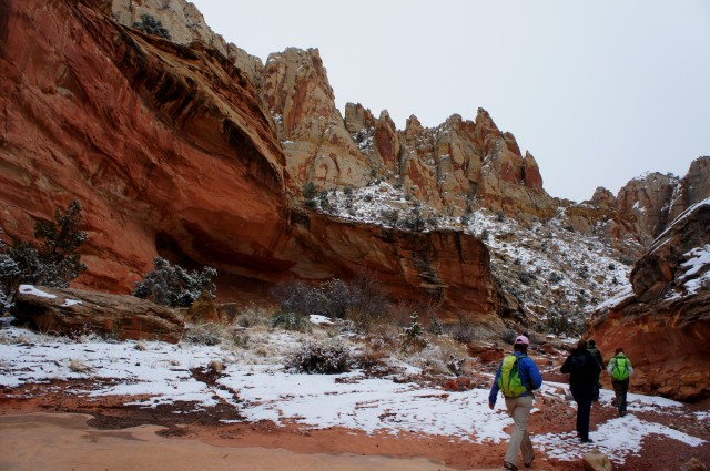 Navajo sandstone emerges high above in Lower Spring Canyon