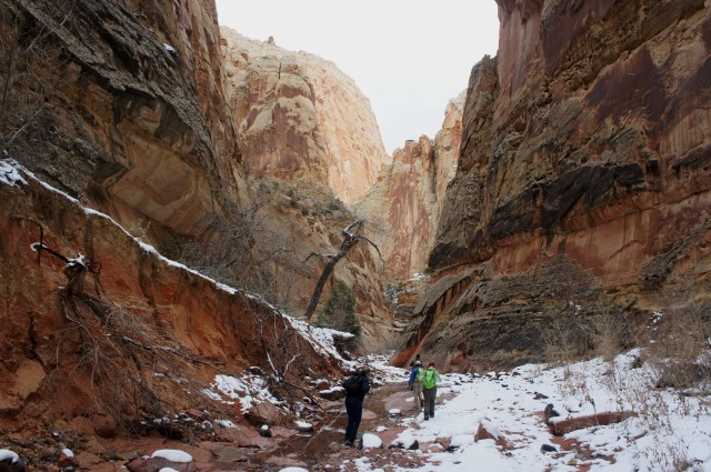 Continuing down Spring Canyon, Capitol Reef National Park