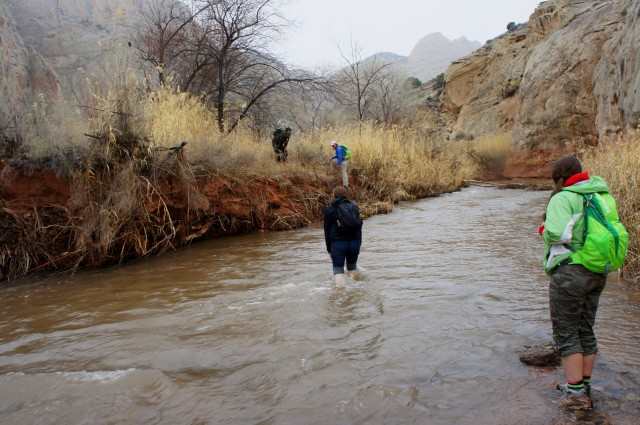 Fording the Fremont River, Lower Spring Canyon, Capitol Reef National Park