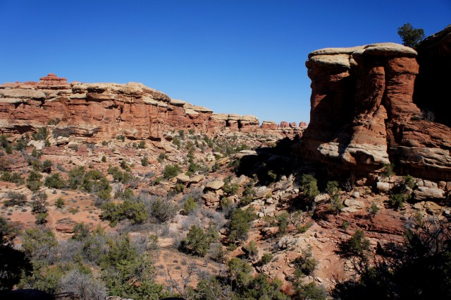 View up Elephant Canyon, on the Chesler Park approach route