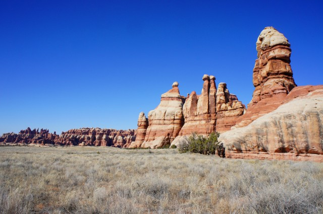 Chesler Park on a March afternoon, Needles, Canyonlands National Park