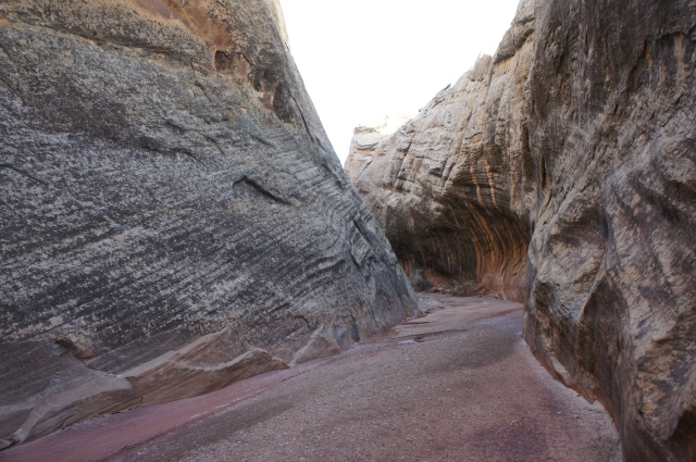 Narrows in Lower Muley Twist Canyon, about 1/3 mile from the junction with the old dugway following Halls Creek