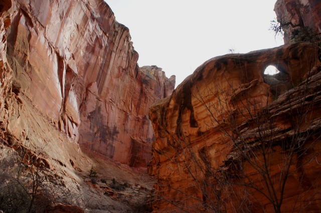 Small archway in Chimney Rock Canyon, Capitol Reef National Park