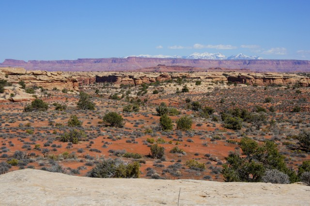 View east to the La Sal Mountains, Confluence Overlook Trail, Needles District, Canyonlands National Park