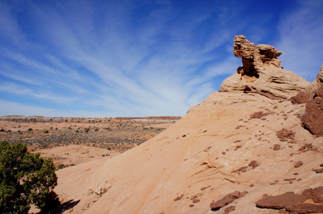 Cresting a butte of Navajo sandstone, between Peekaboo and Spooky Gulch; Cat Pasture beyond
