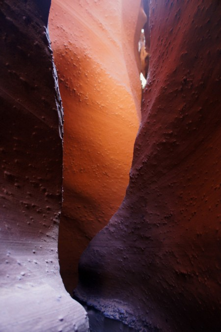 Spooky Gulch slot canyon, Grand Staircase-Escalante National Monument