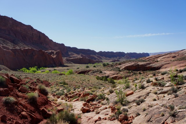 View south from the trail down from Halls Divide, en route to Halls Creek Narrows, Capitol Reef National Park