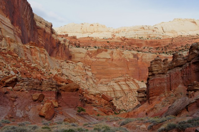 Looking back east down the hidden canyon, The Castle, Capitol Reef National Park
