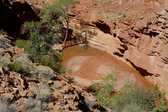 Third waterfall from high up on the bypass trail, Sulphur Creek route, Capitol Reef National Park