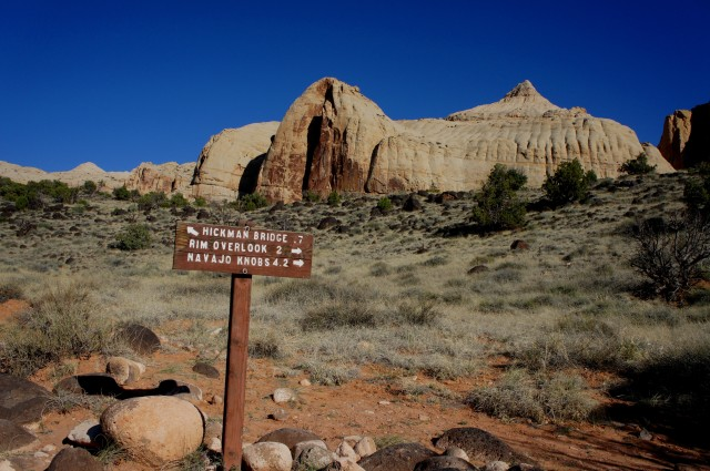 Trail junction, Hickman Bridge Trail, with Navajo Dome beyond, Capitol Reef National Park